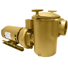 AC Series All Bronze Commercial Pool Pumps