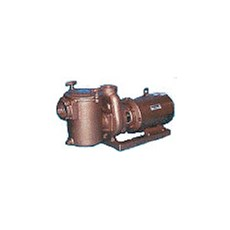 Bronze and Cast Iron Commercial Pumps