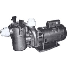 Springwater 555 N Series Noryl Pool Pump
