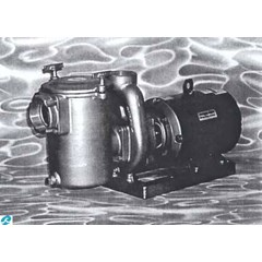 658 Series - Commercial Series Bronze Pump